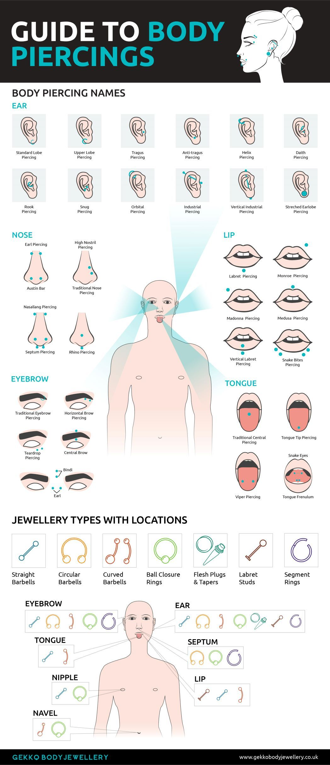 Guide to Body Piercing Jewellery Infographic